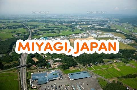trường Nhật ngữ ở Miyagi